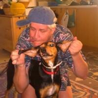 Dumb and Dumbo-dog